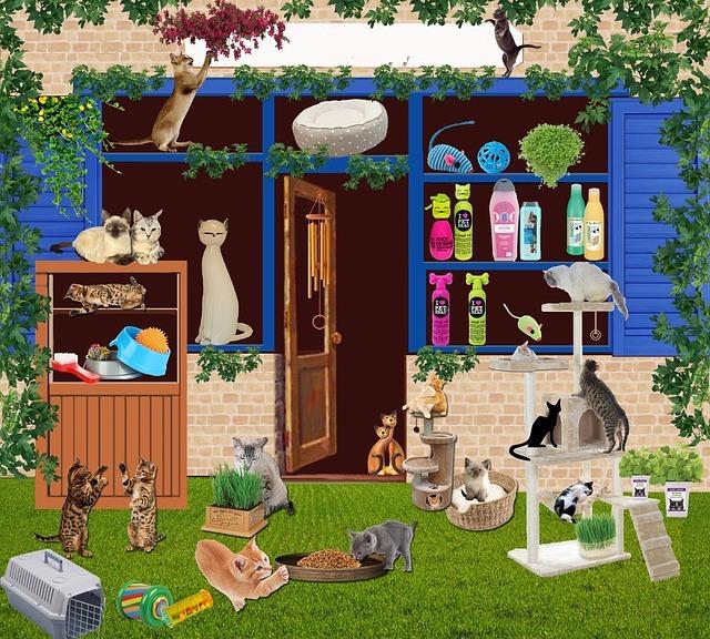 Petite histoire des chats