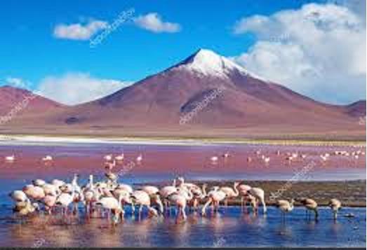 Un voyage aventure hors du commun et inoubliable en Bolivie