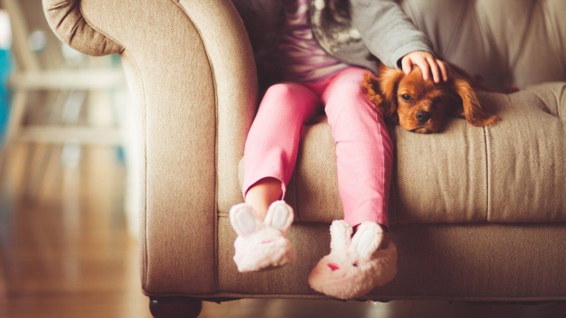 Les meilleurs animaux de compagnie pour enfants