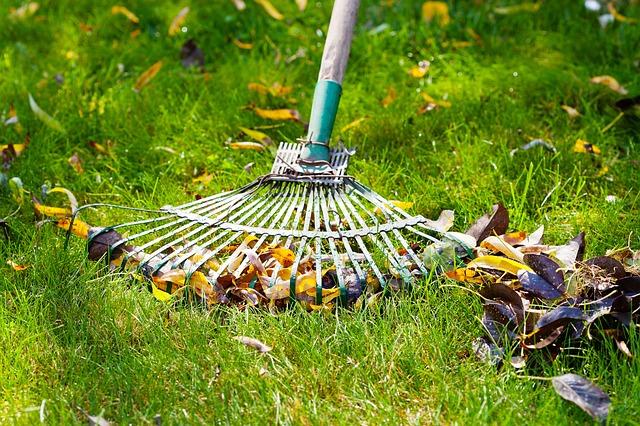 Pourquoi est-il important d'entretenir son jardin ?