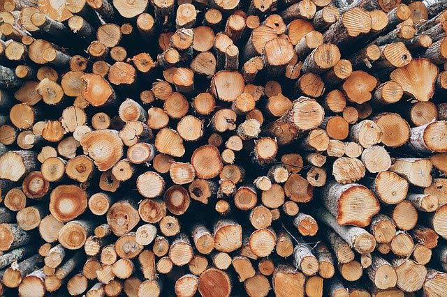 Vous avez besoin d'un broyeur à bois ? Voici ce qu'il faut savoir avant d'acheter